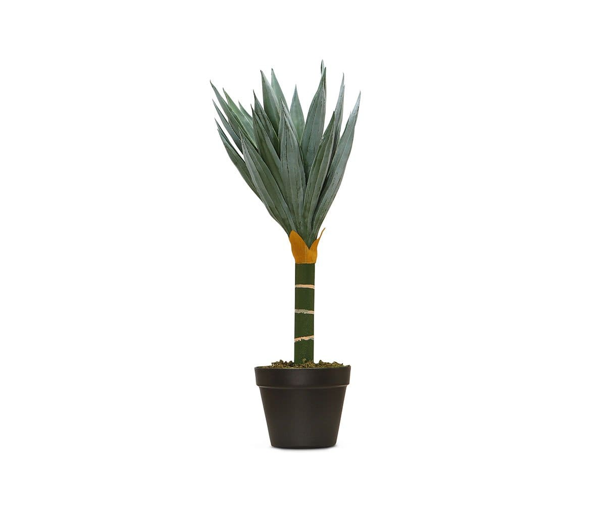 Potted Faux Agave Floor Plant