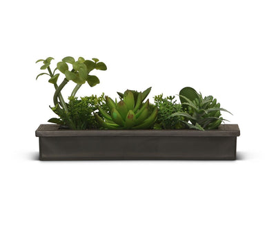 Verdant Faux Succulent Wall Hanging