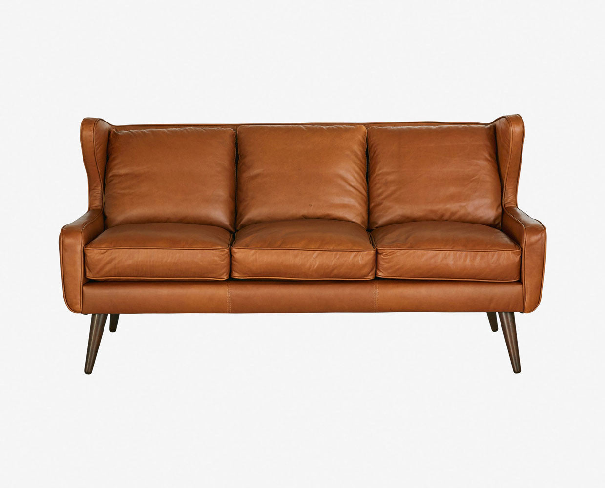 Luxury modern leather sofa