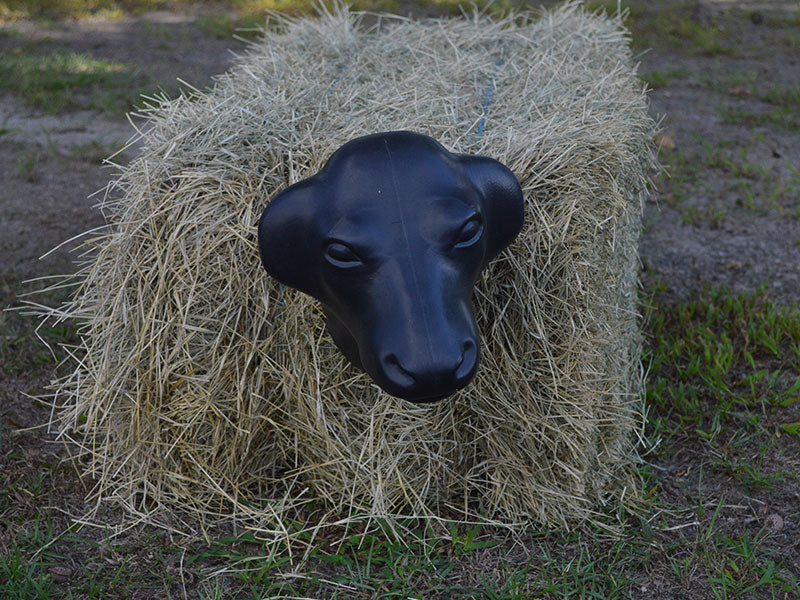 Equi-Sky Calf Head with Hay Bale Spikes