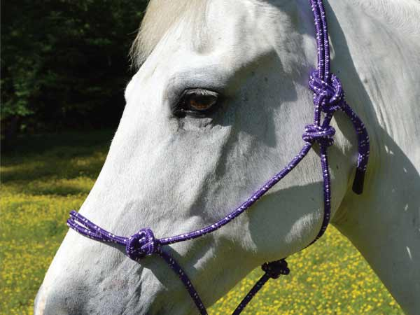 Equi-Sky Mountain Rope Halter with Lead