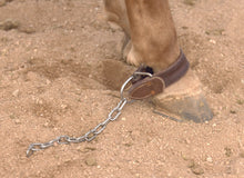 Kick Chain from Al Dunning Tack