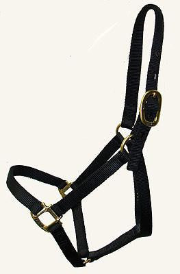 Big D Plain Halter BLACK ONLY (Small Cob)