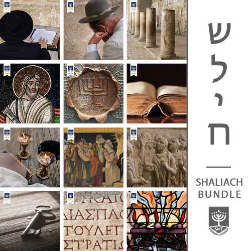 Shaliach Bundle (Audit)