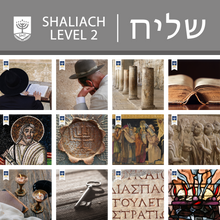 Level 2 - Shaliach (Certificate)