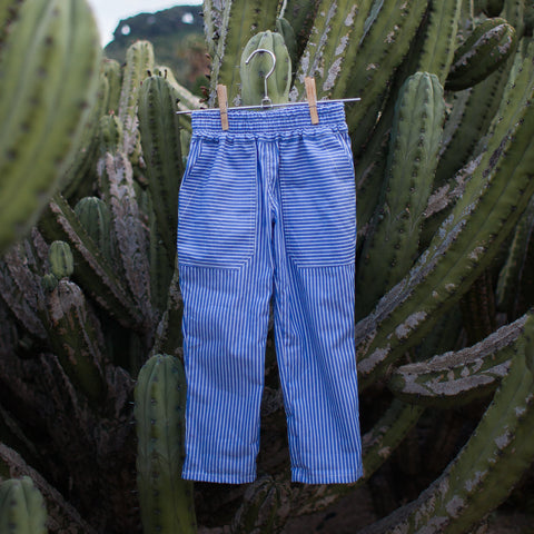 Blue Stripes Cotton Poplin Pants