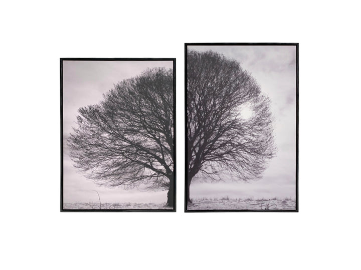 Cuadro Irregular Tree Set 2