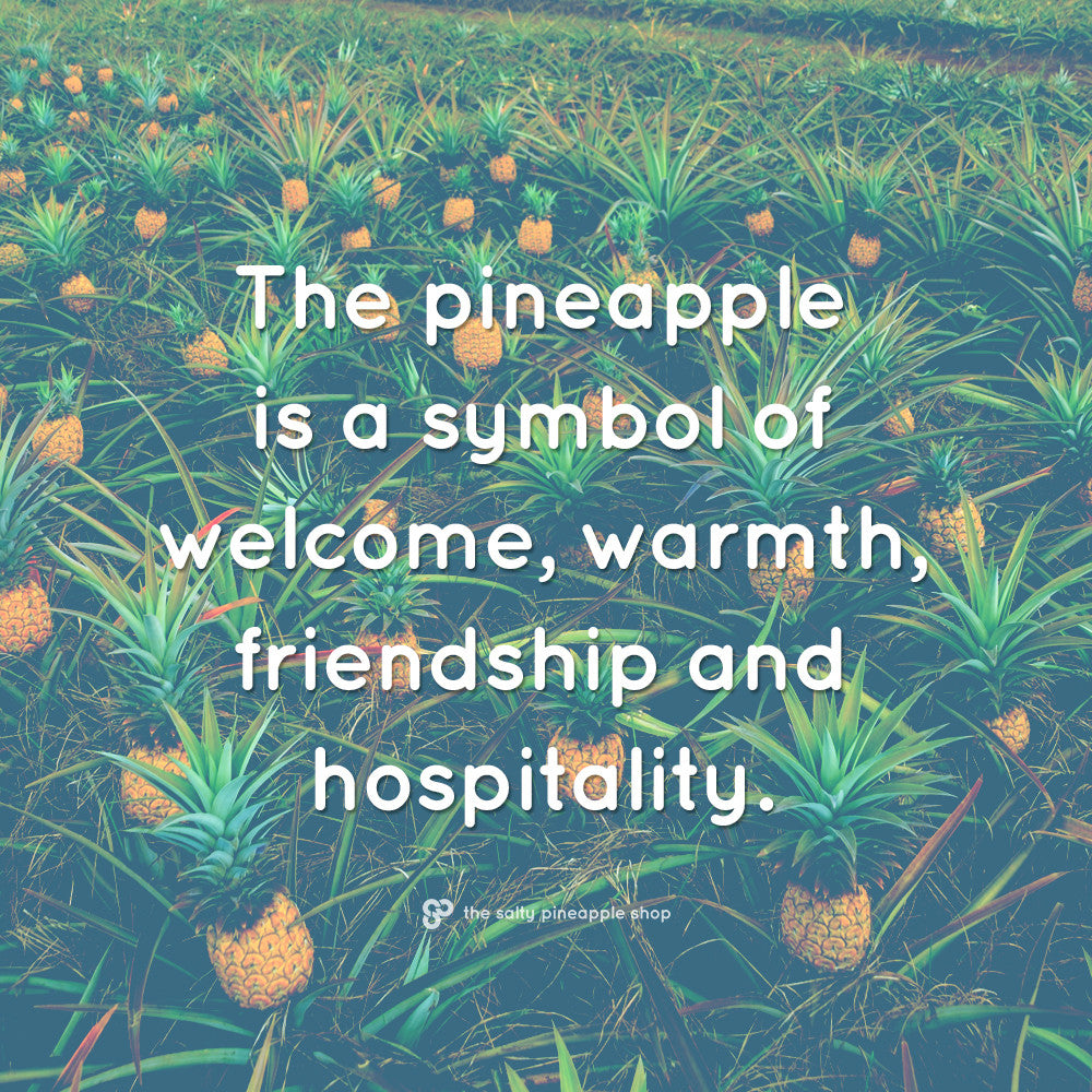 Welcome to the Salty Pineapple Blog! Be a pineapple, follow your dreams and find your paradise. Read More --> #beapineapple #saltypineapple #saltypineappleshop #quote #inspiration #pineapple