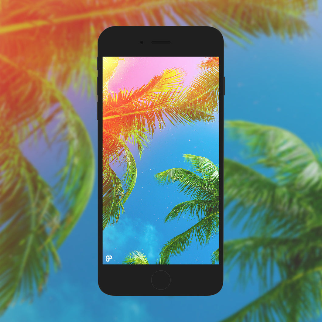 Palm Trees Please - Phone Wallpaper