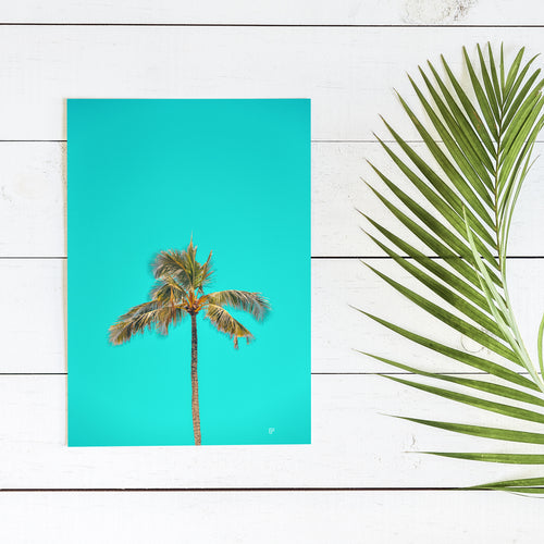 Palms Up - Art Print