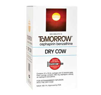 Tomorrow Mastitis Tube 10mL