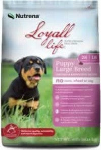 Loyal Life Lg Breed Puppy