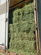 2nd Cutting Alfalfa Hay