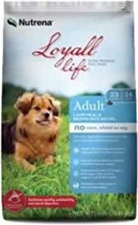 Loyall Life Lamb & Rice 20# (136111-20)