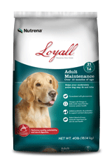 Loyal Life Adult Maintenance
