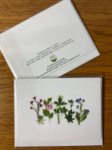 Wildflower Rainbow Card
