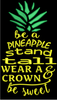 AGD 2786 Be a Pineapple