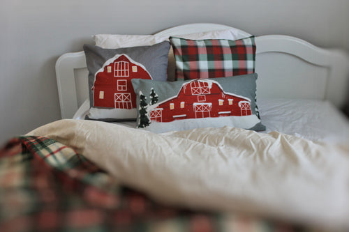'Born in a Barn' Pillow Covers