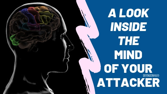 characteristics of a criminal mind a look inside the mind of your attacker