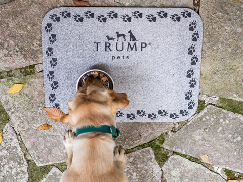 Trump Pets Feeding Mat
