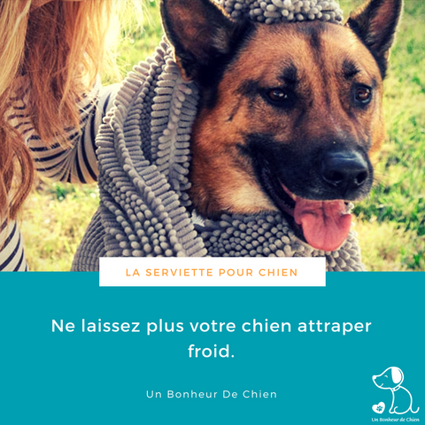 Image of Serviette ultra absorbante pour chien / chat