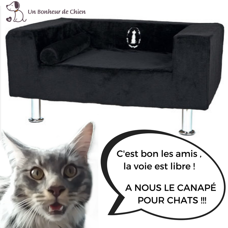 canap luxe trixie pour chien et chat un bonheur de chien. Black Bedroom Furniture Sets. Home Design Ideas