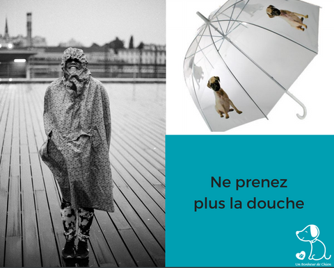 Image of Parapluie cloche design chien