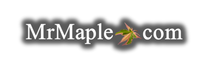 Mr Maple │ Buy Japanese Maple Trees