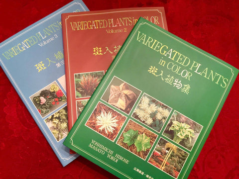 Books - Variegated Plants in Color Complete Set (Vol. 1, 2, & 3 )
