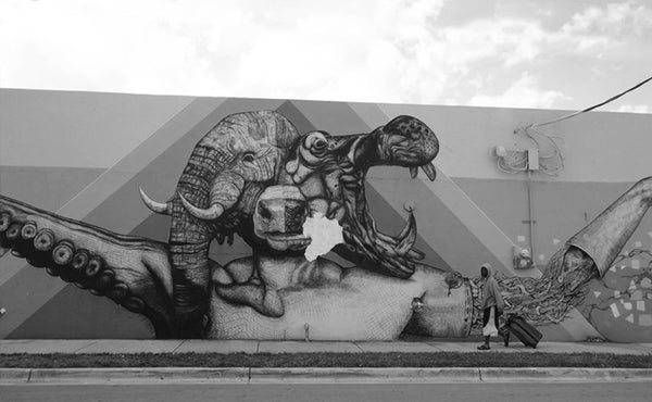 """Eaten Alive"" while walking through Wynwood, Miami"