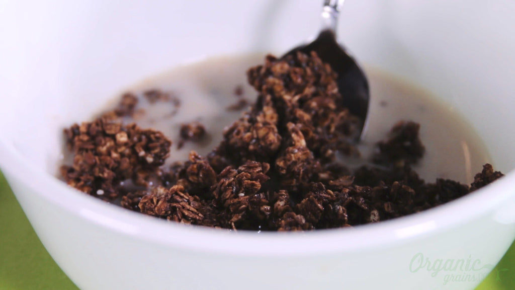 Vegan Chocolate Chia and Teff Granola