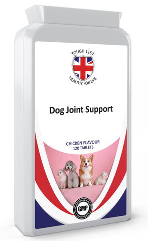 Pet Joint Support Supplement - Army 1157 Kit  Veterans Owned Business