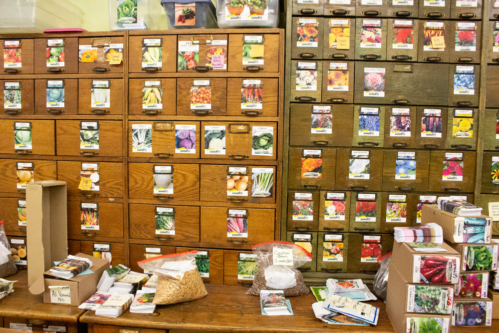 Seed pack wall