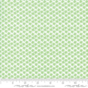 Fiddle Dee Dee Cotton Fabric 22381