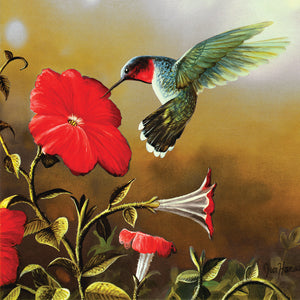 Puzzle Ruby Throat Hummingbird