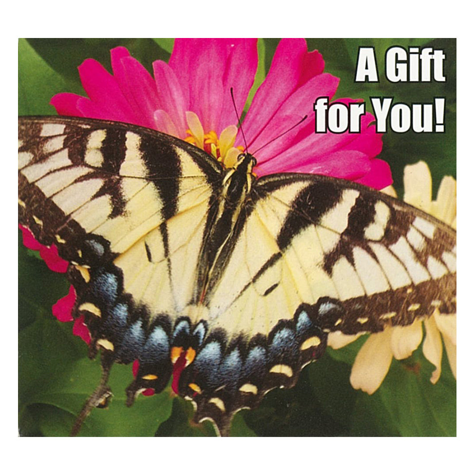 Good's Store Gift Card in a Butterfly on Pink Flower Holder