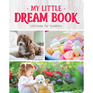 My Little Dream Book