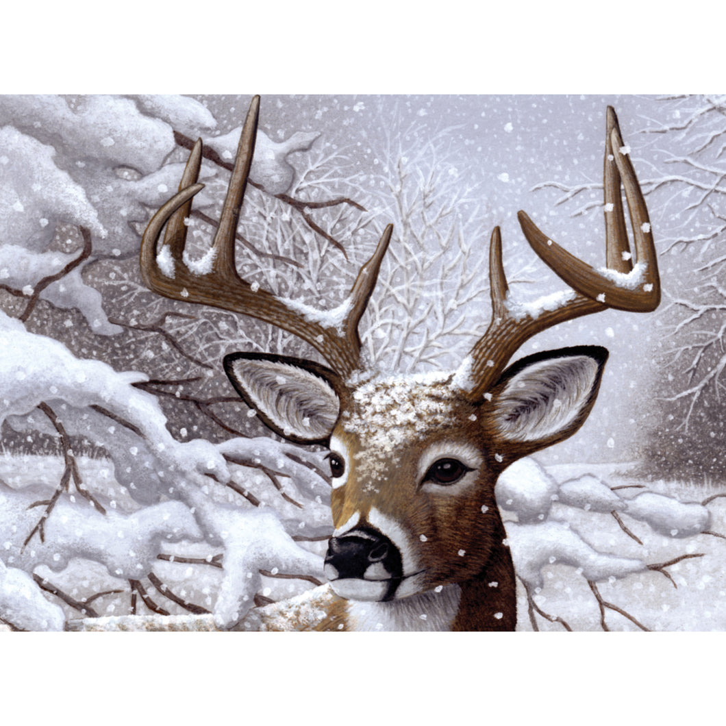 Buck in a snowy woods
