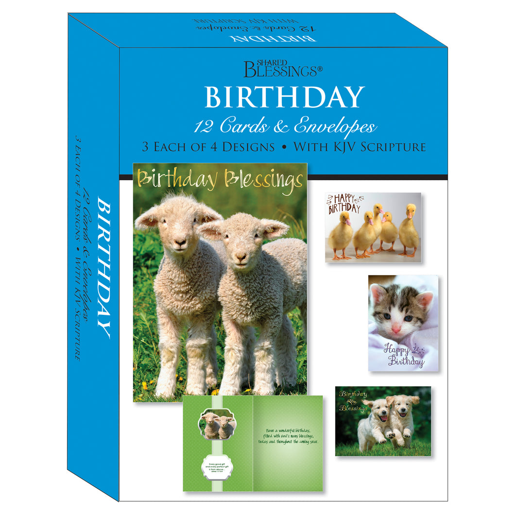 Boxed Cards Birthday Assortment SBEG22291
