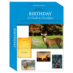 Boxed Cards Birthday Assortment SBEG22295