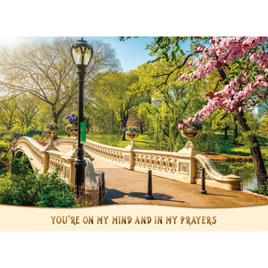 Boxed Cards Thinking of You Assortment SBEG22287