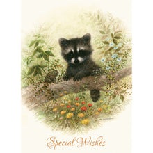 Wee Wildlife Birthday Boxed Cards SBEG22362