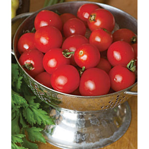 Small round tomatoes