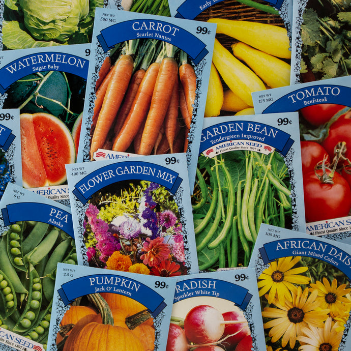 Assorted garden seeds for vegetables, herbs & flowers from American Seed
