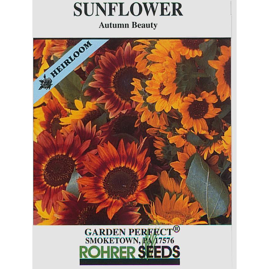 Autumn Beauty sunflower seed pack