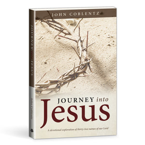 Journey into Jesus book