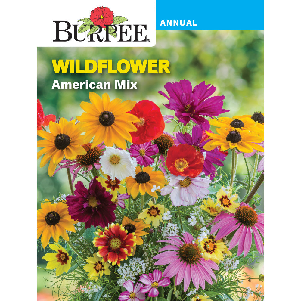 American Wildflower seed mix
