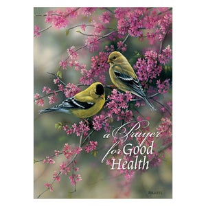 Get Well Cards with birds.