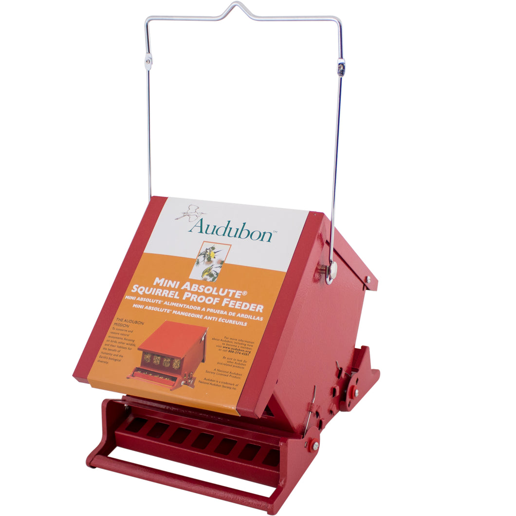 Audubon Red Mini Absolute Squirrel Proof feeder.