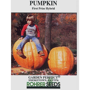 First prize pumpkin seed pack